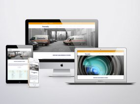 Protronics – Website