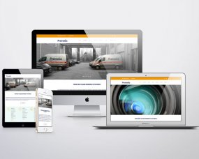 Protronics – Website