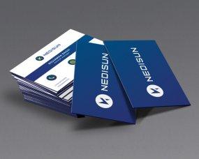 Nedisun – Logo en visitekaartje